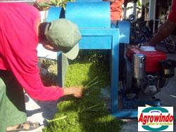 mesin grinder kompos organik 5 tokomesin blitar