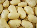 mesin pengupas kentang 1 tokomesin blitar
