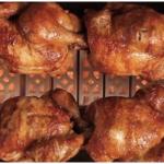 Jual Pemanggang Ayam Gas Rotisseries HORIZONTAL di Blitar